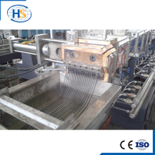 Twin Screw Extruder for Filler Masterbatch Making